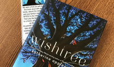 Cover photo of the School 2 enjoying Wishtree! album
